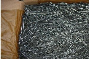 Good Price Galvanized Steel Nail pictures & photos