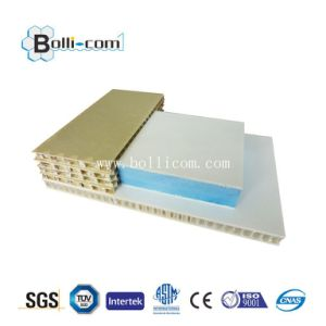 Anti-Scratch Antistatic Scratch Free Satin Metal Honeycomb Panel pictures & photos