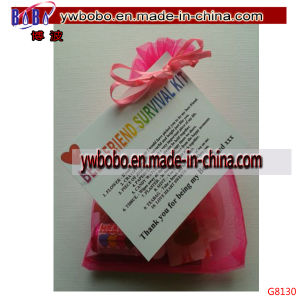 Survival Kit Birthday Keepsake Gift Present Christmas Fun Novelty (G8130) pictures & photos