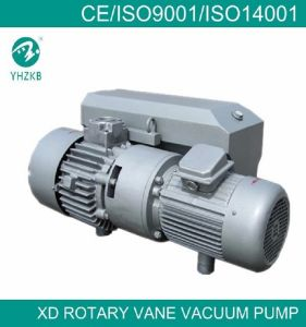 Directly Connected Single Stage Liquid Ring Vacuum Pump for Plastic Industry pictures & photos