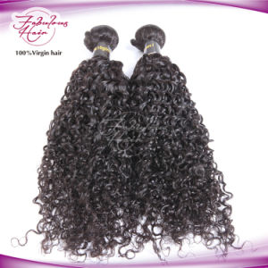 Top Grade Natural Brazilian Curly Virgin Human Hair pictures & photos