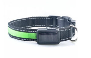 Solar & USB Rechargeable LED Light Dog Collar pictures & photos