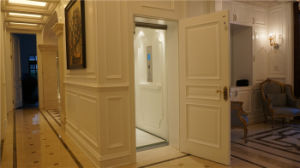 Das Home /Villar Elevator with High Quality pictures & photos