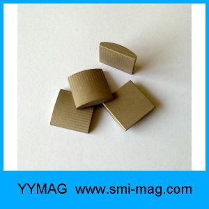 High Quality Segmented Arc Magnet Samarium Cobalt Magnet pictures & photos