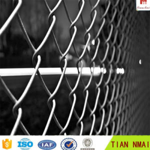 Grass Green Chain Link Wire Mesh pictures & photos