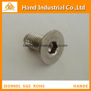 Ss Competitive Price A2 Hex Socket Flat Head Screw pictures & photos
