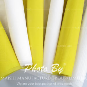 Super Quality Monofilament Printing Mesh pictures & photos