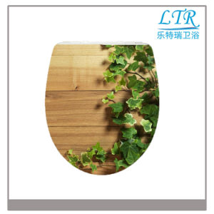 European Bathroom Custom Printed Toilet Seat