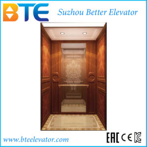 Ce Mrl Home Elevator for Residence Villas with Moden Cabin