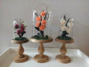 Hot Sale Glass Terrarium for Decoration pictures & photos