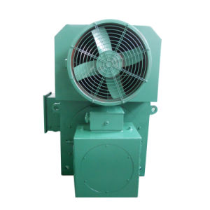 200kw to 1500kw AC Motor 6kv High Pressure Voltage Asynchronous Electric Motors Three Phase Alternating Current pictures & photos