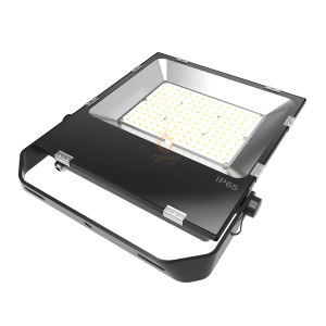 10-200W Waterproof IP65 Outdoor LED Flood Lamp with Philips Les pictures & photos