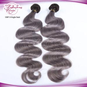 Ombre Color Natural Brazilian Color 1b/Grey Human Hair pictures & photos
