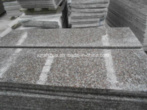 G664 Granite Tiles/Granite Slabs/Granite Steps/Countertop pictures & photos