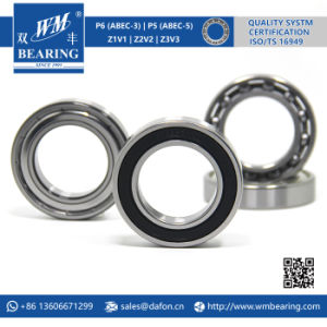 6009 2RS Low Friction Sealed Deep Groove Ball Bearing pictures & photos