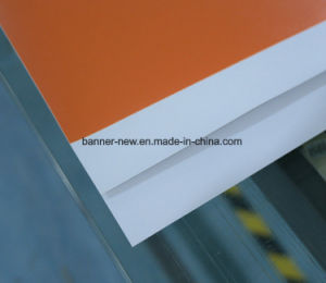 High Resolution Outdoor Double Side Printing PVC Banner Advertising (SS-VB110) pictures & photos