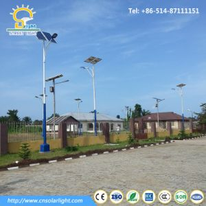 6-8m 30W-120W LED Light with Solar Panel in Nigeria pictures & photos