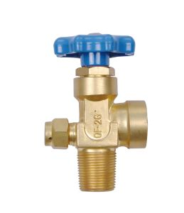 Oxygen Cylinder Brass Gas Valve pictures & photos