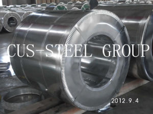 Prepainted Galv Steel Coil/Color Coated Steel Roll/PPGI Metal Coils pictures & photos