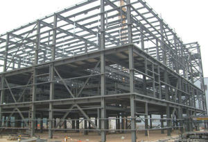 Steel Structure Platform Buildings (HV014)