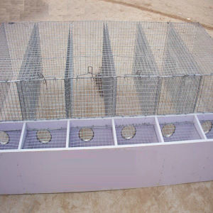 Stainless Steel Dog Bird Parrot Cage pictures & photos