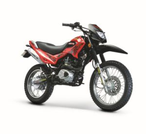 Motorcycle (BRG250GY-7)