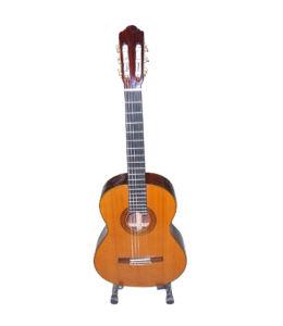 Classic Guitar (GM630B)