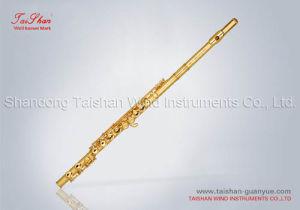 Flutes (TSFL-312A)