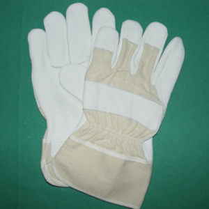 Leather Working Glove pictures & photos