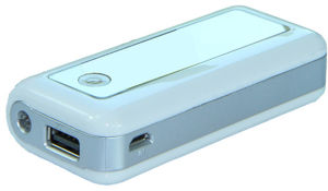 Build-in LED Lighting Power Bank 5600mAh (YR056)