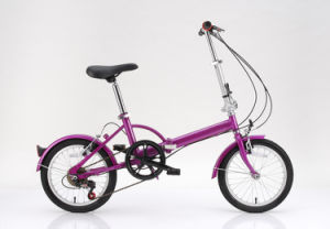 "Cheap 16"" Folding Bicycle (FD-017) pictures & photos"