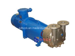 Vacuum Pump with Water as Working Liquid (2BV6131, Price)