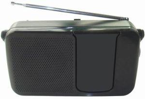 SCA Portable Radio Receiver (KST-R100)