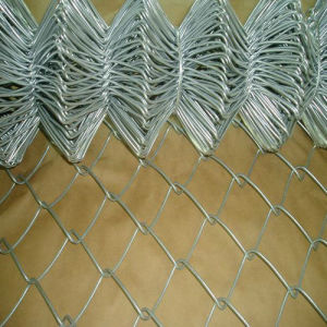 Hot-Dipped Galvanized Protection Netting Garden Fence pictures & photos