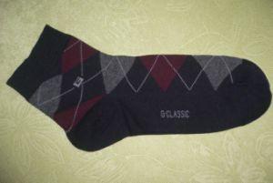 Men′s Socks (HGS5624)