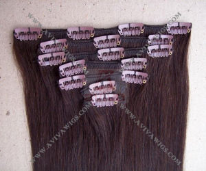 Clip in Human Hair Extension (AV-CH27) pictures & photos