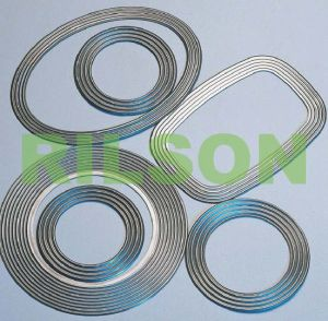 Corrugated Metal Gasket (RS4) pictures & photos