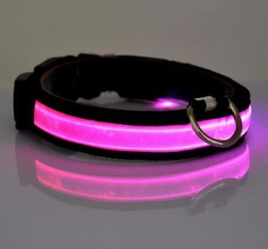 Novelty Dog LED Collar