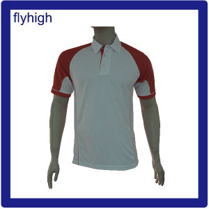 DDP Price Offer for Polo Shirt pictures & photos