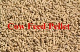Chicken Manure Fertilizer Pellet Making Machine pictures & photos
