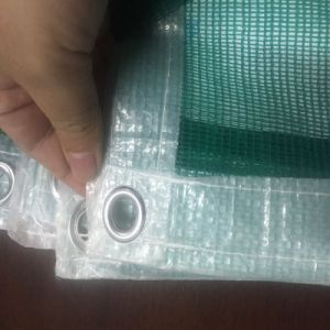 Green Plastic Netting Shade Netting for Agriculture and Constrution pictures & photos