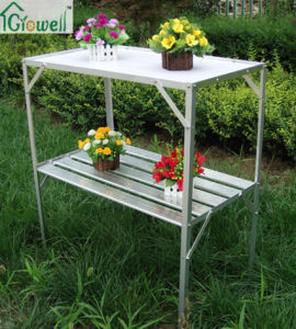 Greenhouse Accessories of Staging/ Shelving (S323B) pictures & photos