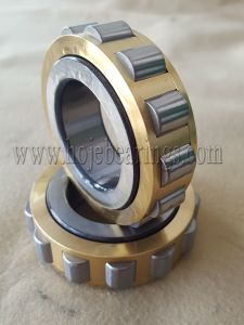 Best Price Cylindrical Roller Bearing Nu256, Nu2256, Nu2356, Nj1060 pictures & photos