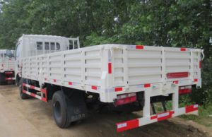 Dongfeng 4X2 Dragon Cargo Truck pictures & photos