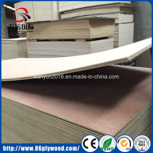 E2 Glue Hardwood Core Commercial Waterproof Bintangor Plywood pictures & photos