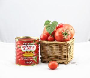 Tomato Paste for Iran 800g pictures & photos