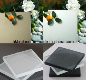 Acid Etched Frosted Glass / 4mm Glass Panel (TX-0727) pictures & photos