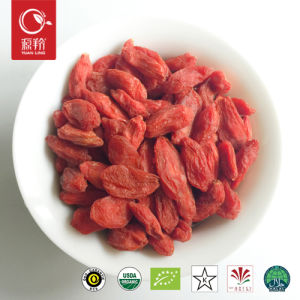 Medlar Qinghai Dried Organic Gojiberry Wolfberry pictures & photos