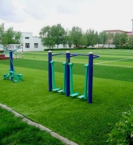 Environmental Friendly Garden Grass (L404315)