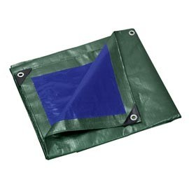 Polyethylene Tarpaulin with Different Size pictures & photos